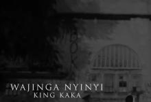Photo of King Kaka – Wajinga Nyinyi