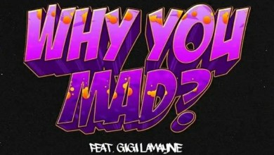 """Photo of DJ Zan-D Releases Music Video For """"Why You Mad"""" Ft. Gigi Lamayne"""