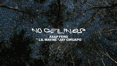"Photo of A$AP Ferg Links Up With Lil Wayne for ""No Ceilings"""