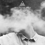 Interview with Mountain Bird