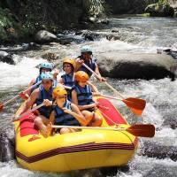Bali Outing Ubud Camp Half Day - Rafting