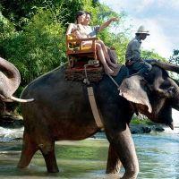 Objek Wisata di Ubud Kombinasi Outbound