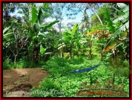 Magnificent 1,000 m2 LAND SALE IN Ubud Tegalalang TJUB478
