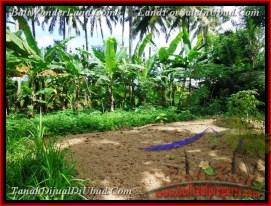 FOR SALE Magnificent LAND IN UBUD TJUB478