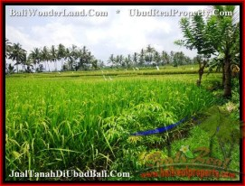 Magnificent UBUD BALI 360 m2 LAND FOR SALE TJUB482