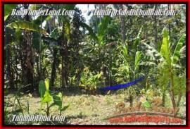 Beautiful PROPERTY 2.400 m2 LAND FOR SALE IN UBUD BALI TJUB454