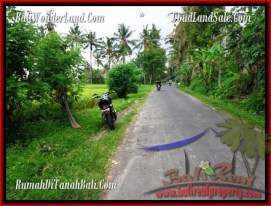 FOR SALE Exotic LAND IN Ubud Pejeng BALI TJUB485