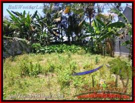 Beautiful PROPERTY LAND IN UBUD FOR SALE TJUB436