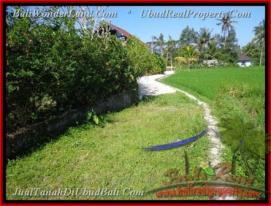 Beautiful PROPERTY LAND IN UBUD FOR SALE TJUB442