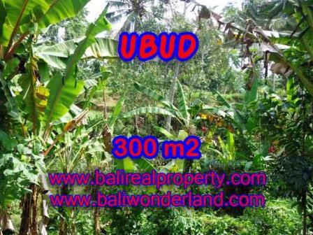 FOR SALE 300 m2 LAND IN UBUD TJUB415