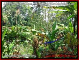 Exotic 300 m2 LAND IN UBUD BALI FOR SALE TJUB415