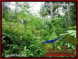 Exotic PROPERTY UBUD LAND FOR SALE TJUB493