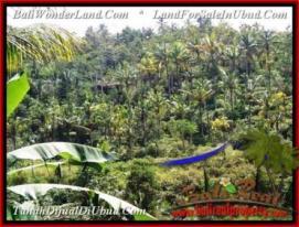 LAND SALE IN Ubud Tegalalang BALI TJUB503