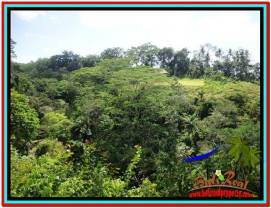 Beautiful PROPERTY LAND FOR SALE IN UBUD BALI TJUB514