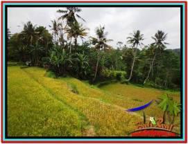 Exotic 2,800 m2 LAND SALE IN UBUD BALI TJUB521