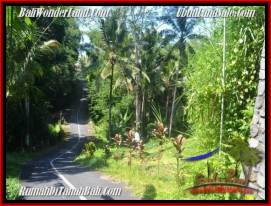 Magnificent UBUD LAND FOR SALE TJUB550