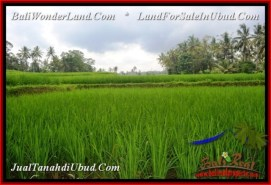 Magnificent PROPERTY LAND FOR SALE IN UBUD BALI TJUB539
