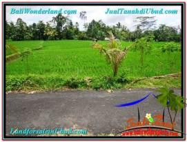 Beautiful 2,900 m2 LAND SALE IN UBUD BALI TJUB564