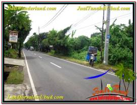 Magnificent PROPERTY LAND FOR SALE IN UBUD BALI TJUB565