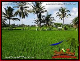 Exotic PROPERTY 3,400 m2 LAND IN UBUD BALI FOR SALE TJUB656