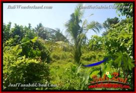 Beautiful PROPERTY UBUD LAND FOR SALE TJUB660