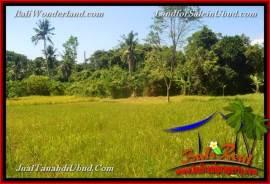 FOR SALE Beautiful PROPERTY 4,000 m2 LAND IN Ubud Gianyar TJUB661