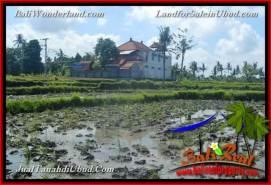 Exotic 600 m2 LAND IN UBUD BALI FOR SALE TJUB664