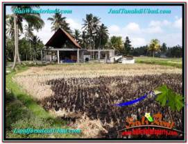 Beautiful UBUD LAND FOR SALE TJUB666