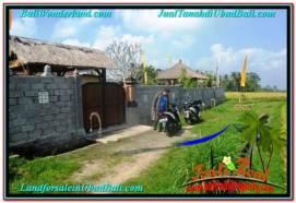 Affordable 1,500 m2 LAND SALE IN UBUD BALI TJUB667