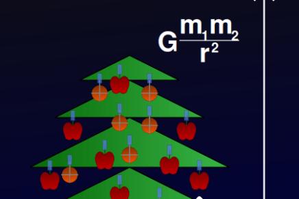 Feliz Gravidad