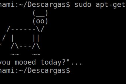 10 comandos básicos para usar en la terminal