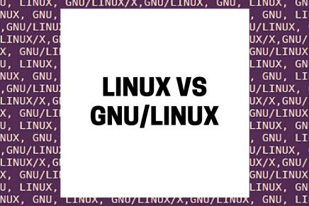 ¿Esto cómo es? ¿Linux? ¿GNU/Linux? ¿Pepinos en vinagre?