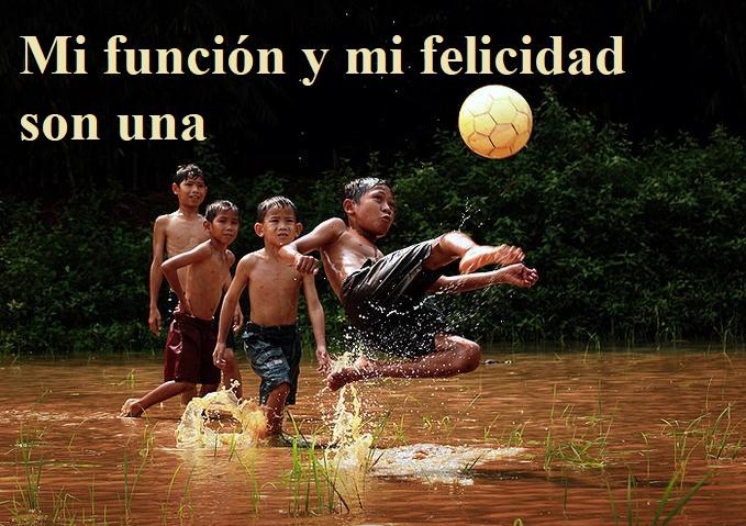 """Reflexión lección 66 (7.3.21) """"Mi función y mi felicidad son una""""."""
