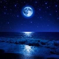 muzica-noptii