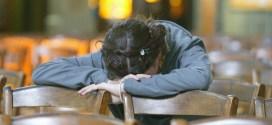 إليك هذه الصلاة الرائعة بعد الخروج من كرسي الاعتراف