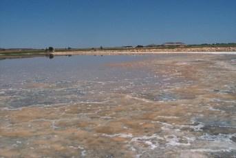 Laguna de Pétrola en Albacete