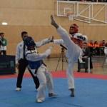 taekwondo_daniel-2