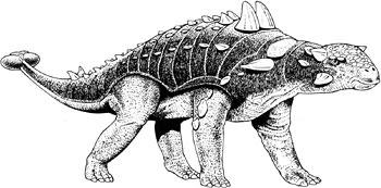 Ankylosaurus reconstruction