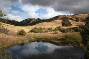 Blue Oak Ranch Reserve Reserve pond