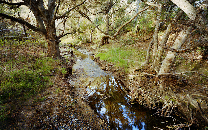 Dawson LosMonos Canyon Reserve
