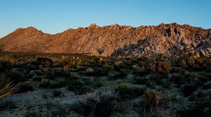 Sweeney Granite Mountains Desert Center