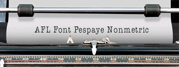 AFL Font Pespaye Nonmetric via YouTheDesigner