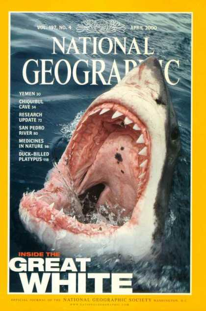National Geographic April 2000 Issue via YouTheDesigner