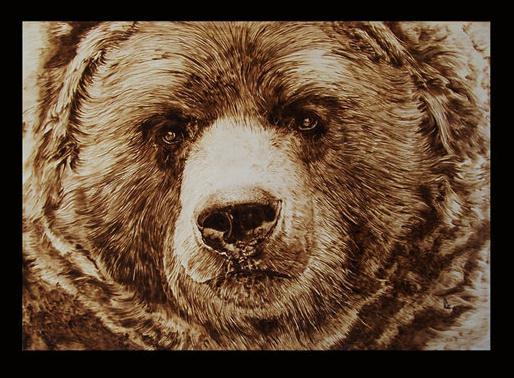 """Bear"" - pyrography by Davide Della Noce"