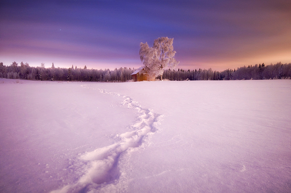 Photography by Mikko Lagerstedt
