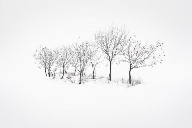 Paks, Hungary | Akos Major Photography