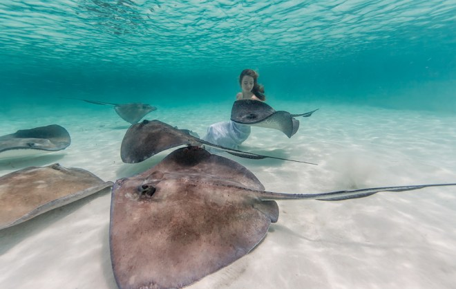 Elena Kalis Underwater Photography Stingray and Girl 2