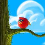 Bird Ball Android Oyunu İndir