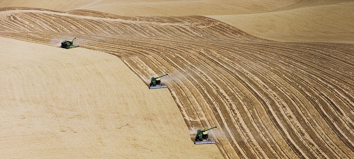Image result for massive industrial farming from the air