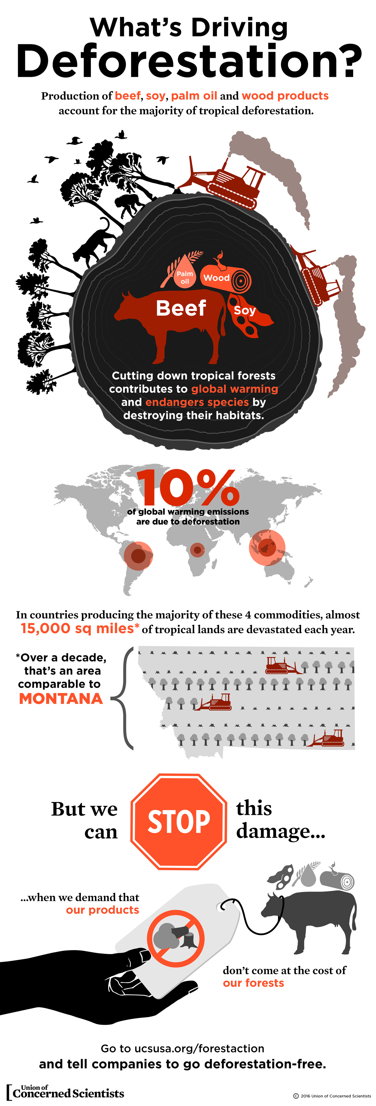 Infographic What S Driving Deforestation Union Of